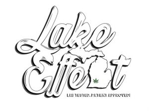 Lake Effect logo